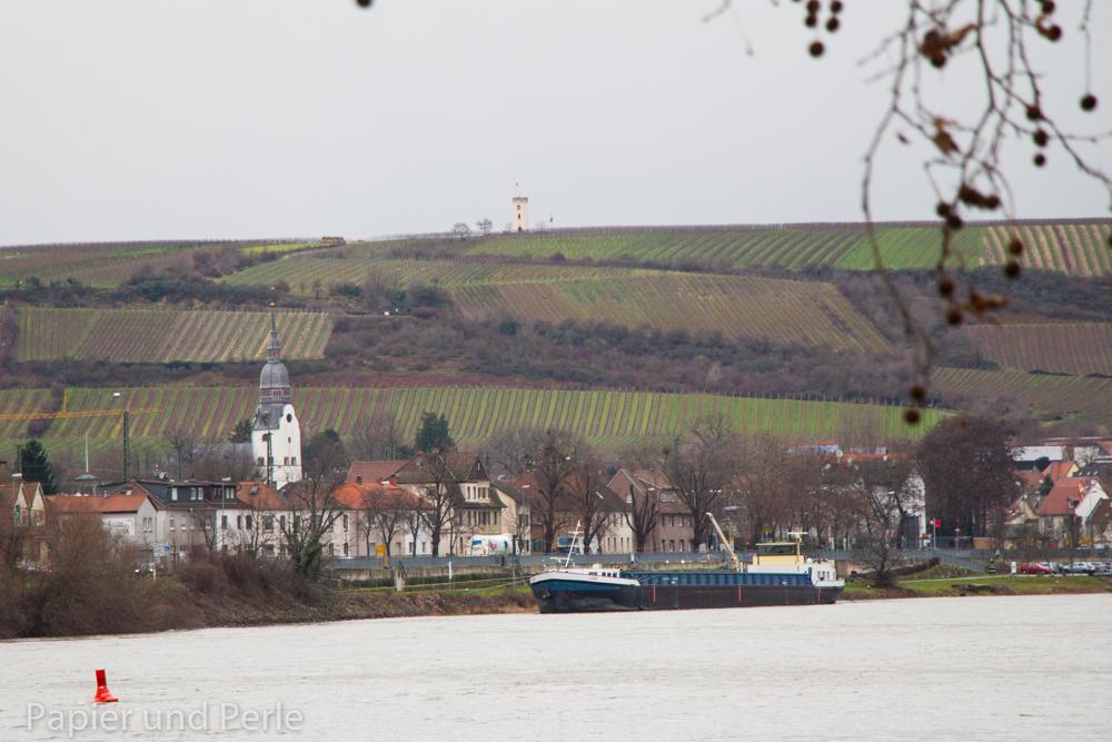 Nierstein und sein Wahrzeichen, der Wartturm vom hessischen Rheinufer aus gesehen